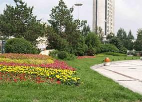 上海市政绿化