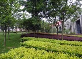 西安市政绿化