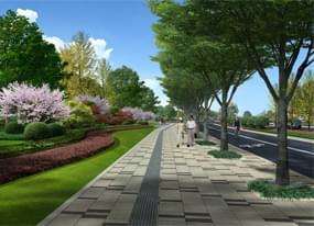 沭阳道路绿化