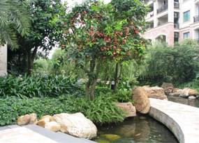 南昌象湖公园