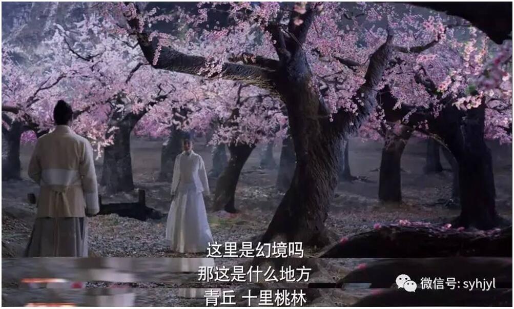 三生三世 现实版的十里桃林