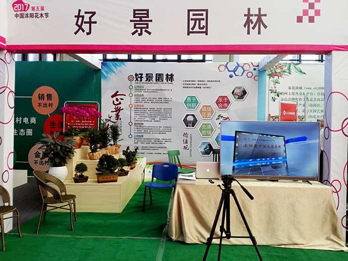 好景园林受邀参展第五届沭阳花木节-苗木交易博览会